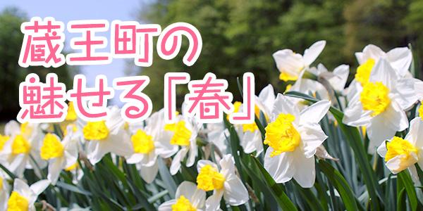 蔵王町の魅せる「春」