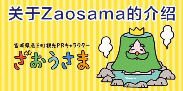 关于Zaosama的介绍
