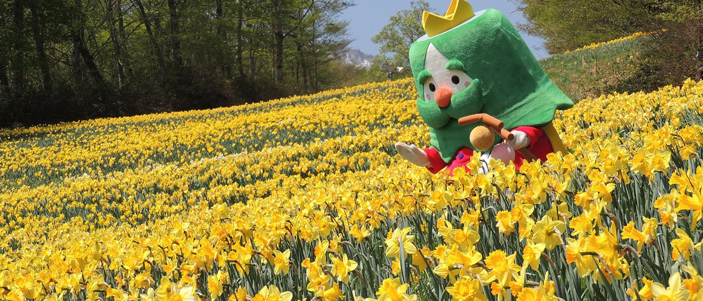 花と食とイベントで感じる春の蔵王