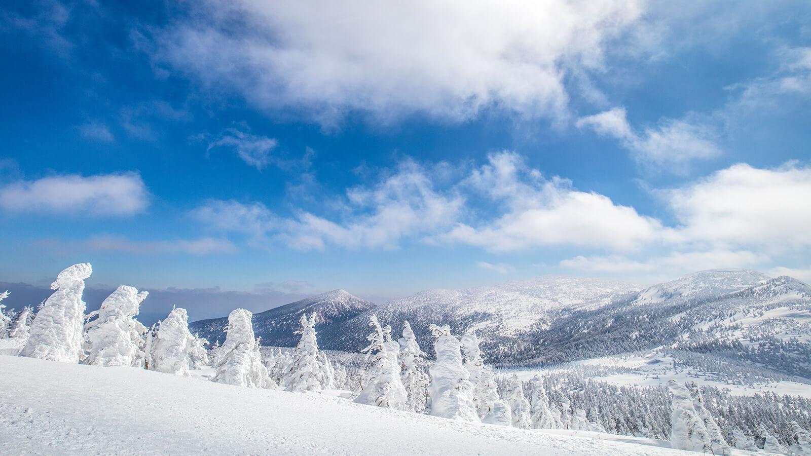 樹冰(宮城藏王的樹冰之旅)