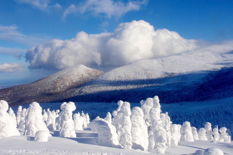 みやぎ蔵王の樹氷めぐりツアー