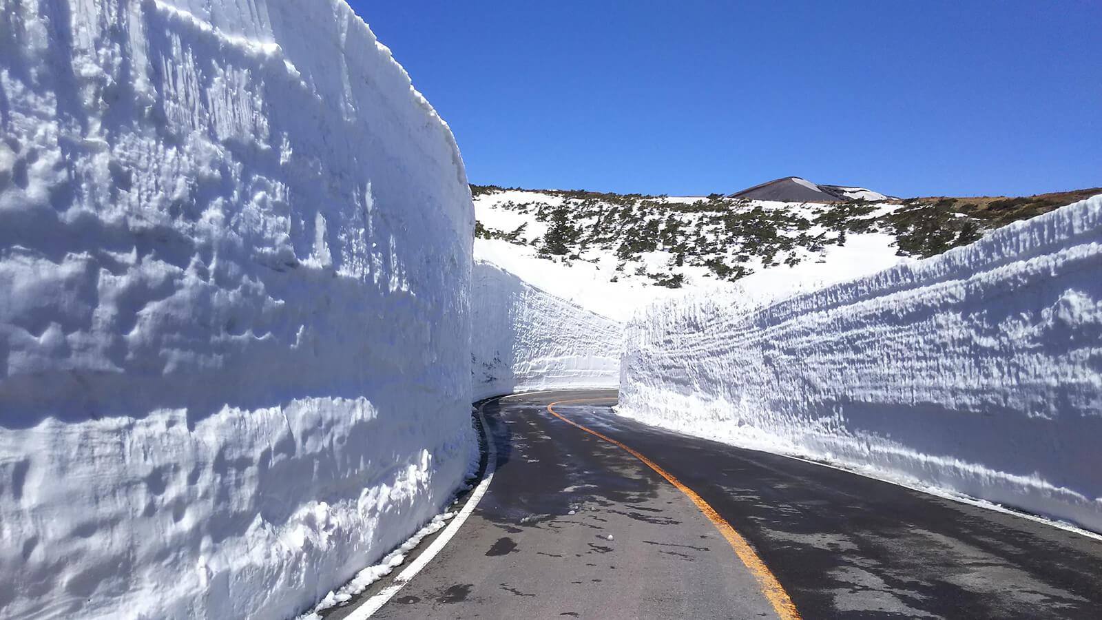 藏王ECO-LINE雪之壁